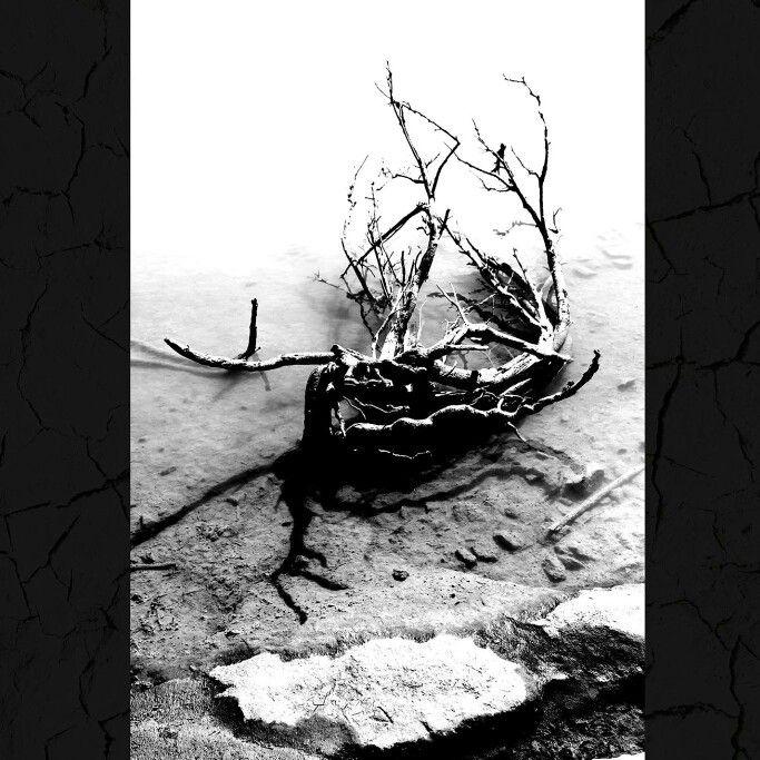 Death. ©Ann-Jorunn Jentine Aune. Photography.