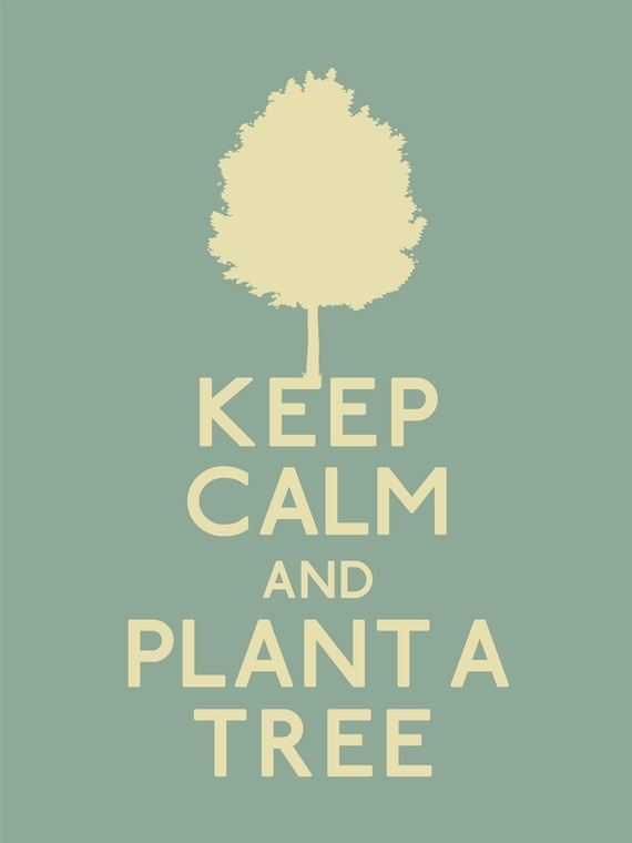 Always a Great Idea = Plant a Tree. . . And Then Keep Calm and Help Save Our Planet   <3