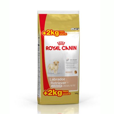 Check out Royal Canin Labrador Junior, 12+2 Kg Tailor made food for Labrador Retriever puppies from 2 to 15 months. Contributes to the healthy development of the growing Labrador  Retriever puppy's b1 structure and promotes harmonious weight gain.