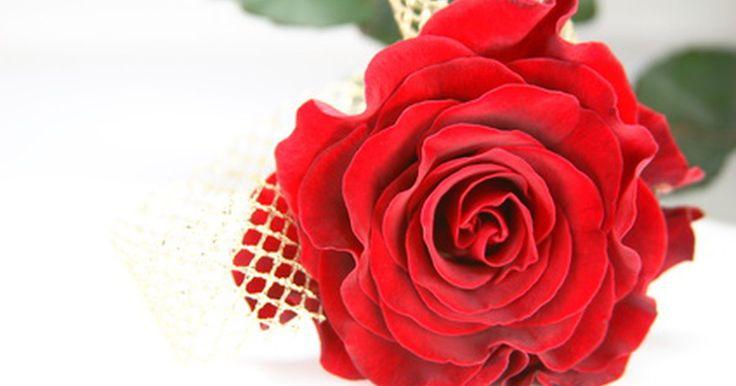 ¿Qué hacer en tu 40º aniversario de boda?. Cuando una pareja llega a su 40º aniversario de boda, probablemente disfrute más de pasar tiempo con sus seres queridos en lugar de recibir un regalo comprado en la tienda. Busca oportunidades para reunir a toda la familia y construir buenos recuerdos.