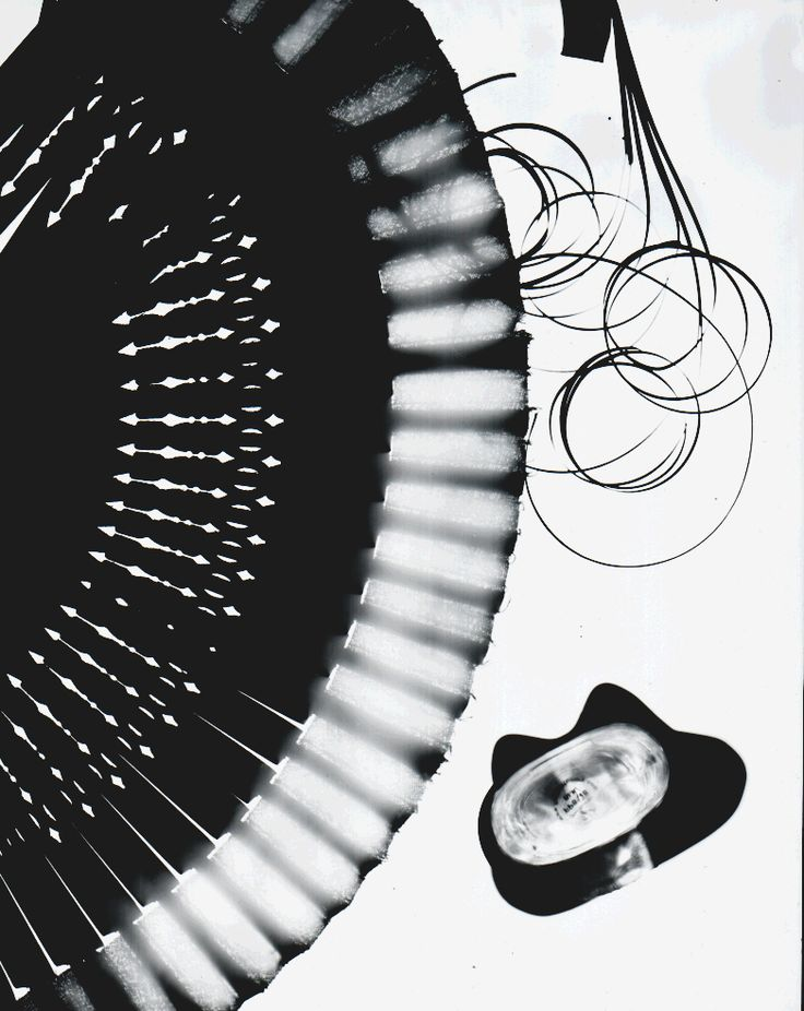 a photogram of random objects