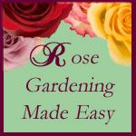 A great site for those that are challenged at growing beutiful roses.  Rose Gardening Made Easy