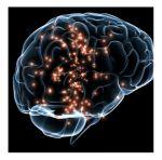 Ketones to combat Alzheimer's disease | PLOS Neuroscience Community