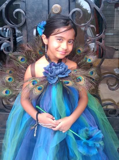 Another peacock costume