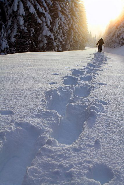 Snowshoeing Find fantastic winter holidays, adventure holidays abroad, skiing…