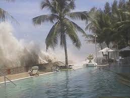 Resultado de imagen para informacion de tsunami