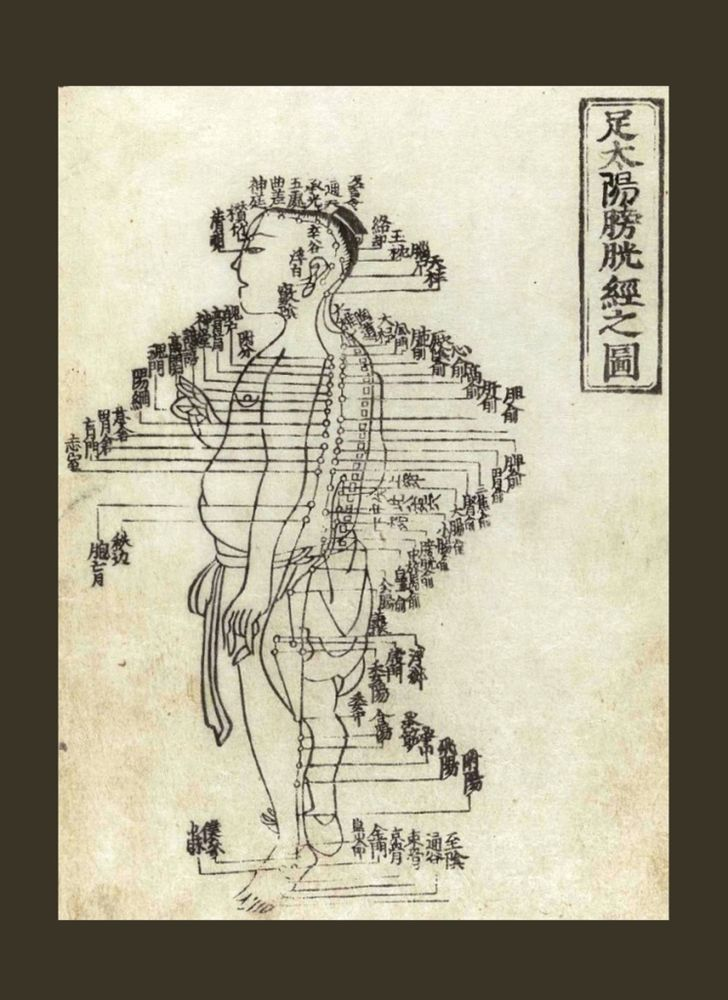 Hua Shou Acupuncture Diagram  :  Ming Dynasty  :  circa 1340s #Chart