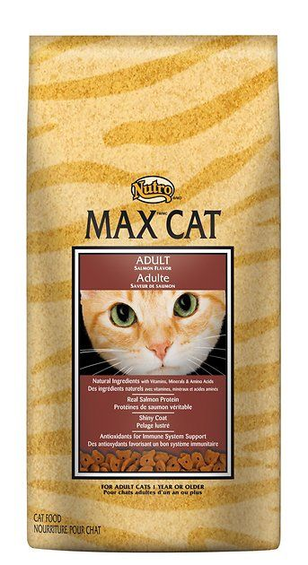 Buy Nutro Max Adult Salmon Flavor Dry Cat Food 16 Lb Bag At Chewy