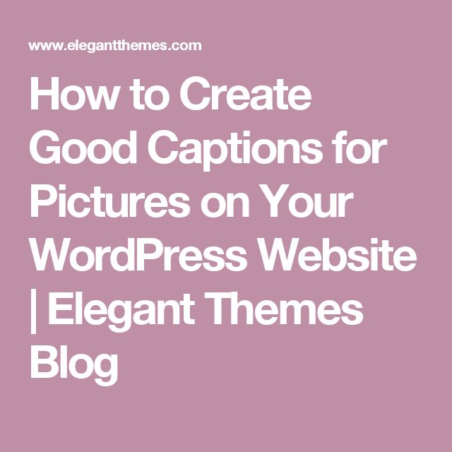 How to Create Good Captions for Pictures on Your WordPress Website | Elegant Themes Blog
