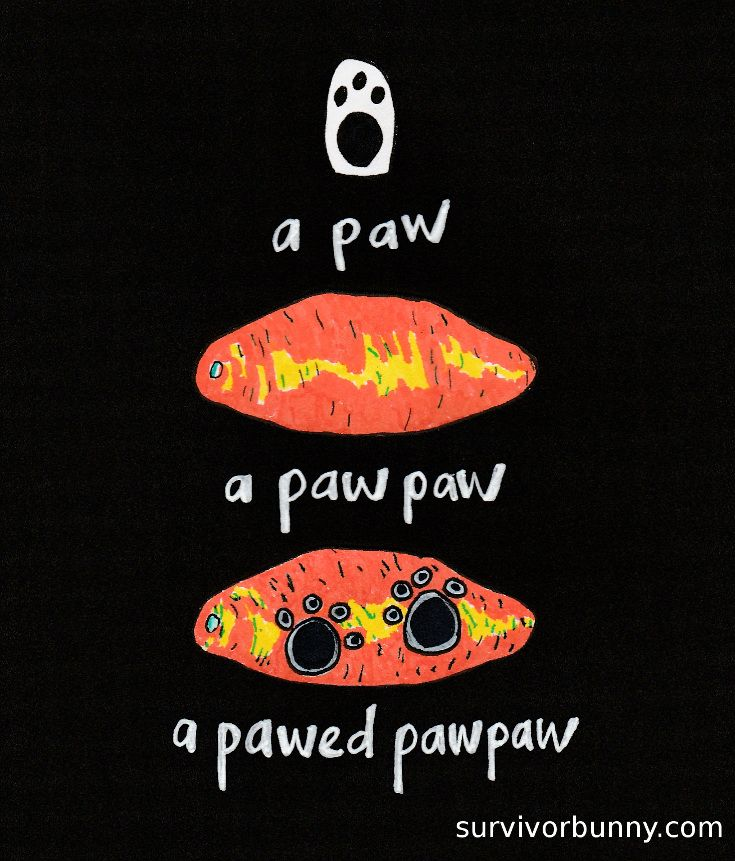 A paw, a paw paw, and a pawed paw paw. By Kerrythe Mahaffey. See more at www.kerry-the.co.za and survivorbunny.com  #survivorbunny