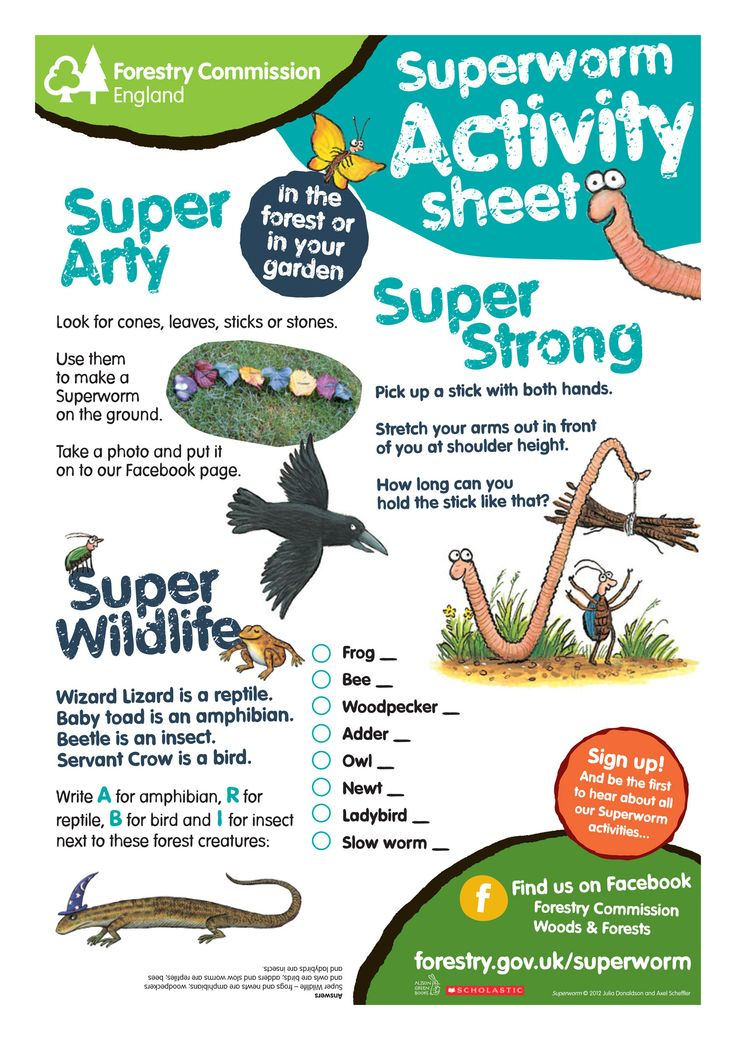 Download Superworm Super arty. Get the kids to create their own superworm, become super strong and classify insects, birds, amphibians and reptiles! http://www.forestry.gov.uk/pdf/Forestry_Commission_Superworm_Super_Arty.pdf/$FILE/Forestry_Commission_Superworm_Super_Arty.pdf