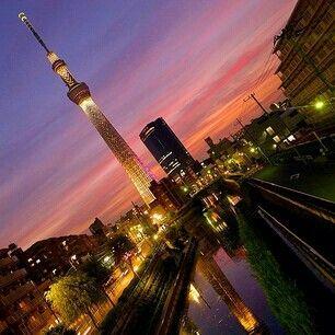 MOONLIGHTICE.   TOKYOSKYTREE
