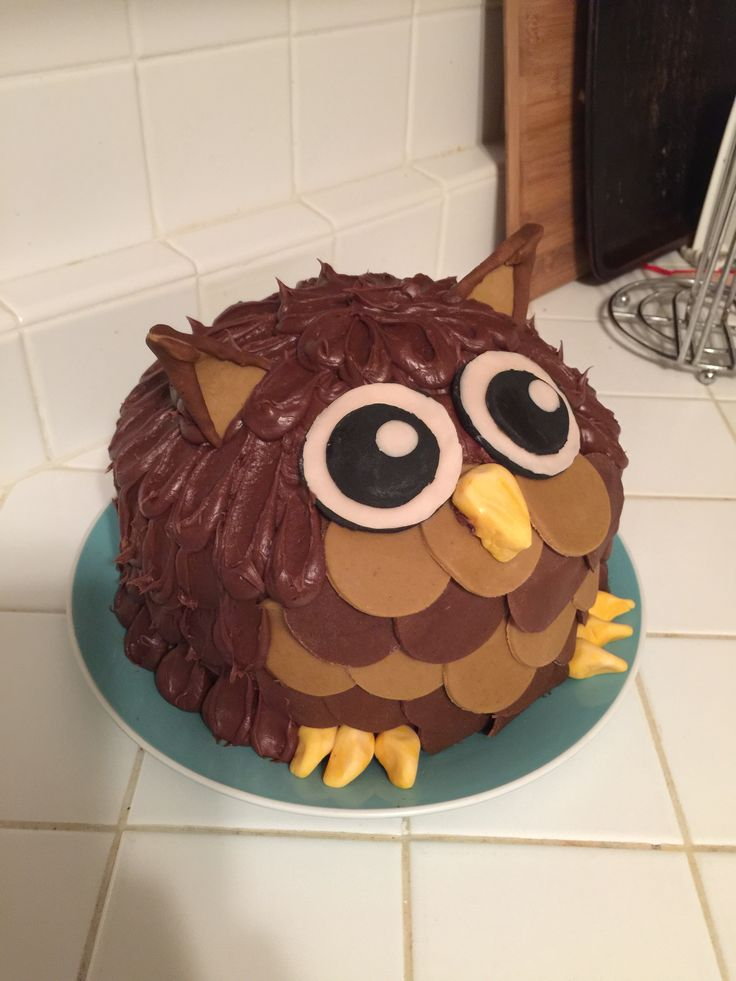 Owl cake #chubbycute #owls #hooter #cakesoncakes #adorable #owl #owlcrafts