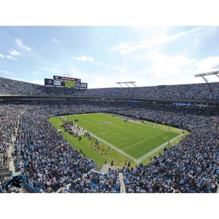 Artissimo Designs NFL Panthers Stadium Canvas, 22x28, Multicolor