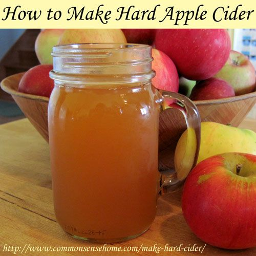 How to Make Hard Cider Tutorial on Common Sense Homesteading at http://www.commonsensehome.com/make-hard-cider/