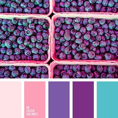 Color Palette No. 1858
