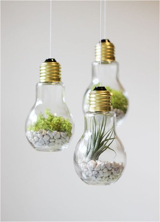 Terrariums are on the rise and can be super simple to make! Find any small glass container, we love this light bulb idea from Clad & Cloth, put in some rocks, sand or soil, and finish off with a succulent or air plant.
