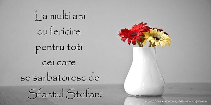 La multi ani cu fericire pentru toti cei care  se sarbatoresc de Sfantul Stefan!