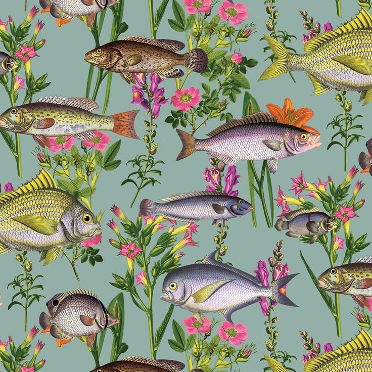 Lagoon Teal Fish Wallpaper by Holden Multicoloured Fishes 12171 in Home, Furniture & DIY, DIY Materials, Wallpaper & Accessories | eBay!