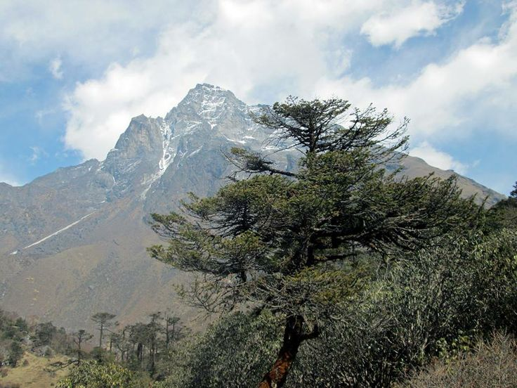 When it comes to activities in Nepal,you might think you have heard it all before.Famous for its spectacular mountain peaks and the loyalty and friendliness of its inhabitants…Everest base camp trekking is most popular trekking trail in the Everest region.