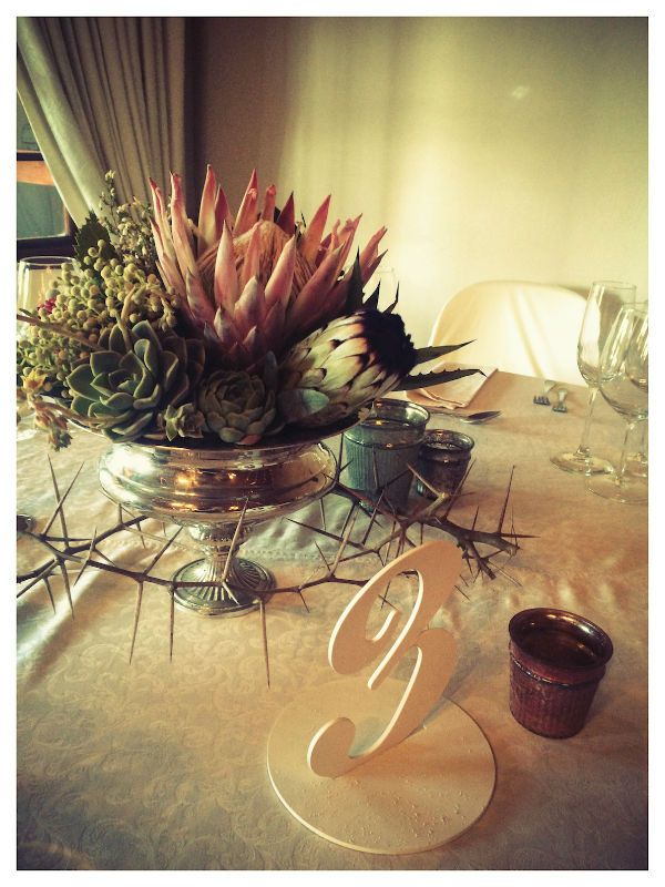 Mixed Protea, Aloe & Succulent Arrangement in Large Silver Rose bowl - Guest Tables