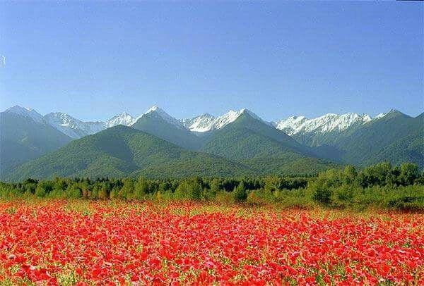 Fagaras Mountain.  Romania
