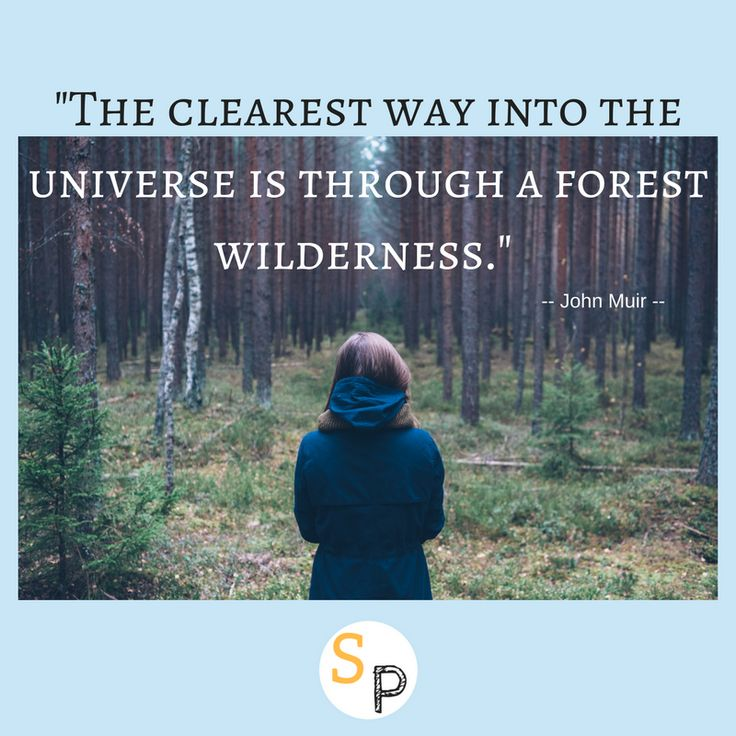 """The clearest way into the universe is through a forest of wilderness."" --John Muir  Explore a forest near you. Go on an adventure. Immerse yourself in it.  #sunshineandpowercuts #lifeisbeautiful #enjoyitsbeauty #forest #wilderness #nature #universe #offgrid #offthegrid #offgridlife #offgridliving #inspire #inspireothers #inspirationalquotes #inspireotherswithnature"