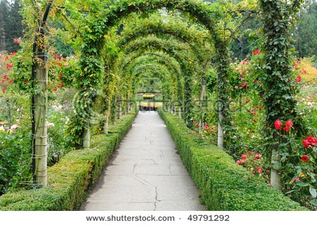 loveGardens Ideas, Gardens Paths, Gardens Arches, Beautiful Places, Canada Stockings, Beautiful Gardens, Free Beautiful, Gardens Image, Butchart Gardens