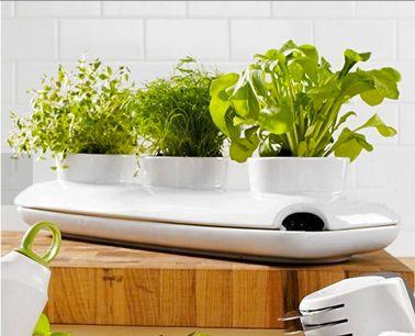 jardinière en grès blanc pour plantes aromatiques avec réserve d'eau