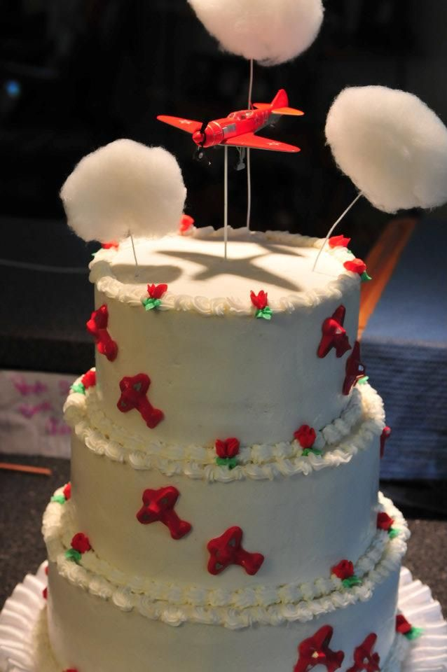 aircraft wedding cake 17 best images about airplane on flies away 10633