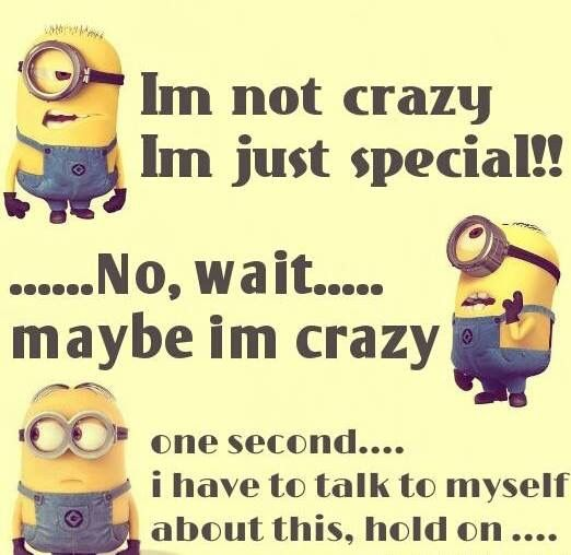 Yup...crazy,,,wait...maybe not...I'm a special kind of crazy. Yeah, that't the ticket!