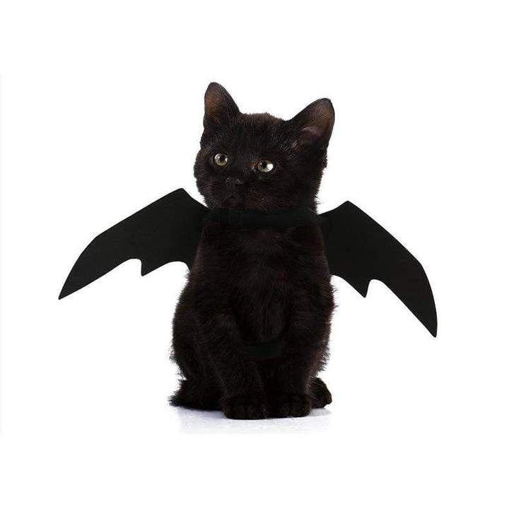 Easy Batwings Cat Halloween Costume Cat Halloween Costume Pet