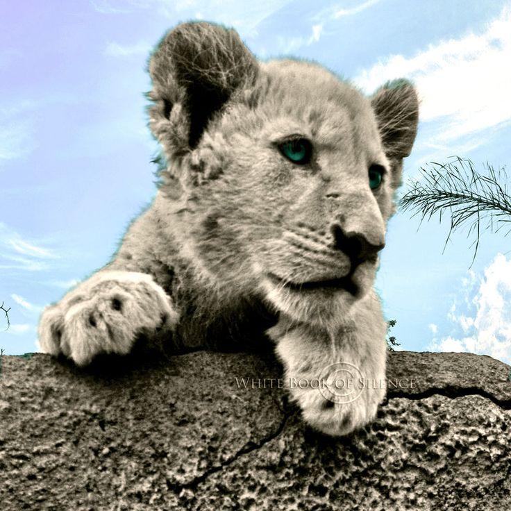 Sweet Little Lion by WhiteBook.deviantart.com on @DeviantArt