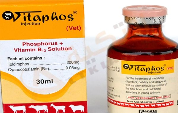 دواء فيتافوس Vitaphos شراب لعلاج بعض الأمراض التي ي عاني منها الأطفال فكما نعلم أن الأطفال غالبا ما ي عانون من أمراض صحية كثيرة يجب Vitamins Nutrition Food