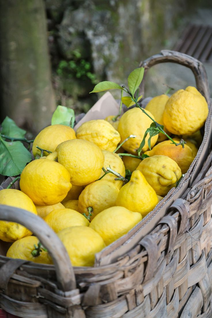 Limoncello in Sorrento, Italy | www.sweetteasweetie.com                                                                                                                                                     More