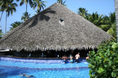 Dreams Punta Cana's Manatees Bar is one of Trip Advisor's 10 Most Refreshing Swim Up Bars!