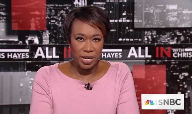 Joy Reid says 2nd Amendment supporters 'creepy,' MSNBC guest replies conservatives will 'thankfully die off' soon