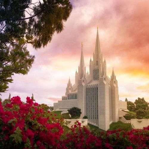 san-diego-temple-sunrise-and-flowers