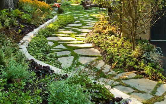 Garden design courses dublin for Garden design courses