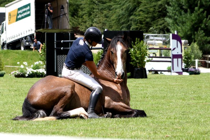 My Horses Human : Photo Vicki Wilson & Argo KH