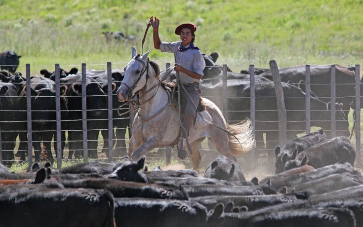 """Horseback riding, Argentine Asado and Gauchos cannot be missing in a experience at typical Argentine Ranch. Would you like to see how it's like? Take a look to out """"Holidays in Argentina & Uruguay"""" journey! #acrossargentina #horsebackriding #gauchos #traditions #asado #argentina #ranch #estancia #experience #culture #localculture #holidays #vacation #horses #travel #voyage #journey #places #southamerica #adventure"""