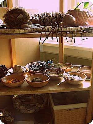 bringing elements of nature into the classroom is easy and affordable; it conveys a sense of tranquility and calmness while sparking curiousity and wonder