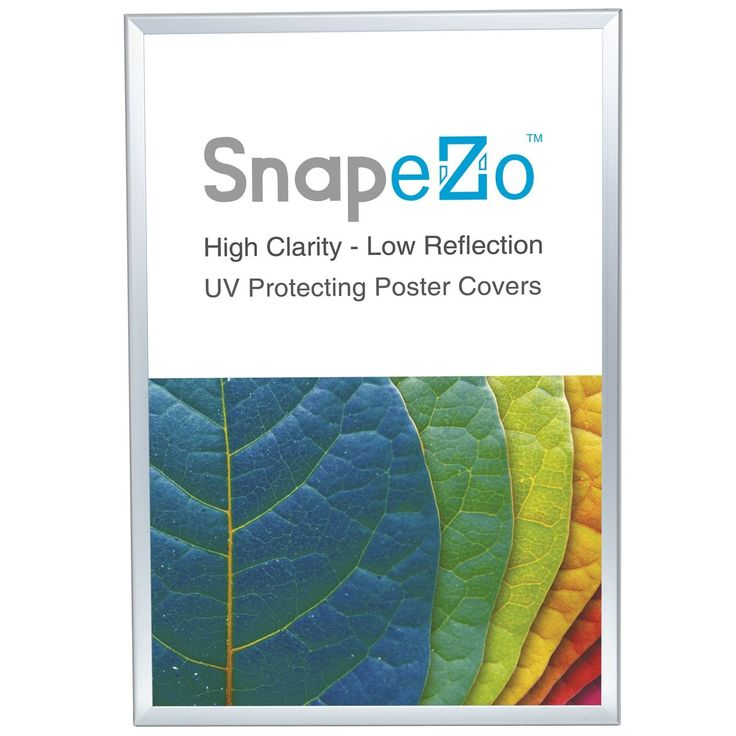 """Silver Snap Poster Frame 36x48 Inches, 1.25"""" SnapeZo Profile, Front Loading Snap Display, Wall Mounted, Professional Series"""