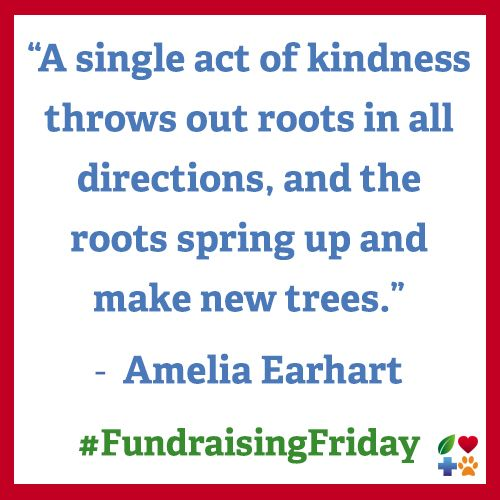 It's #FundraisingFriday! Please make a donation to your favorite nonprofit.