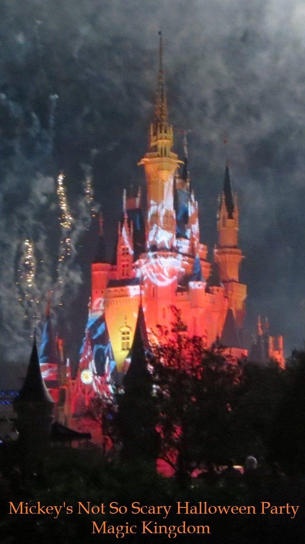 79 best Disney World Parades & Fireworks images on Pinterest