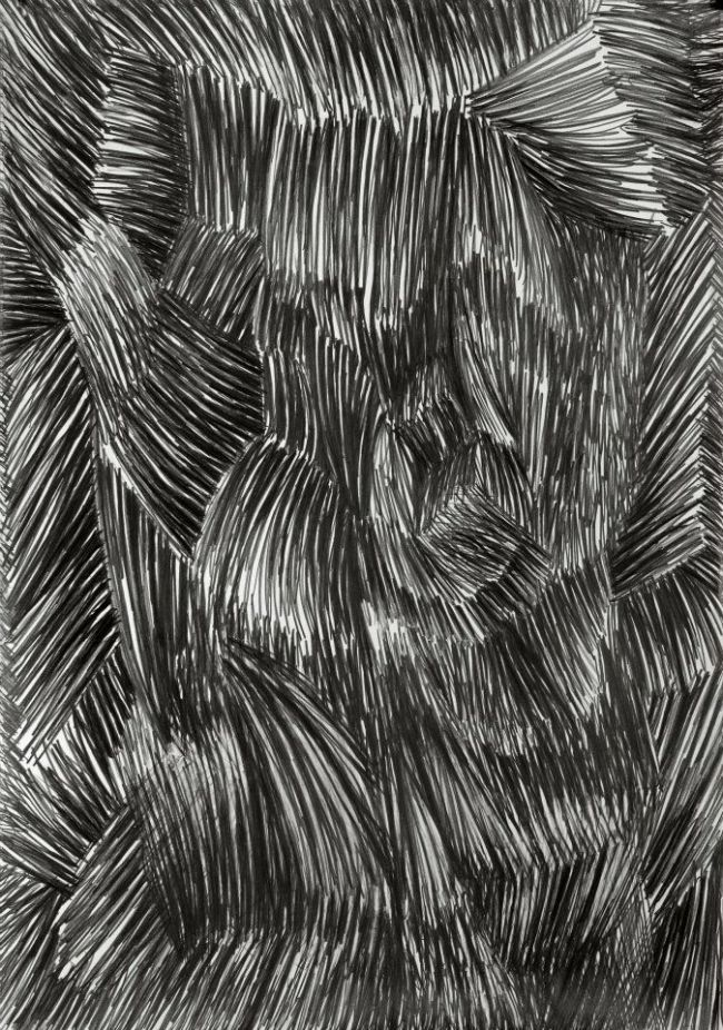 Janina Wierusz-Kowalska, Fur, pencil on paper, 100 x 70 cm, 2012