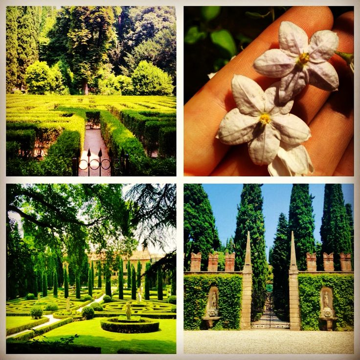 Giardino Giusti gardens. Verona, Italy.