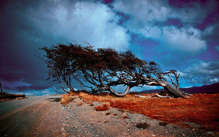 #Ushuaia, Argentina. #travel. www.quynhle.com