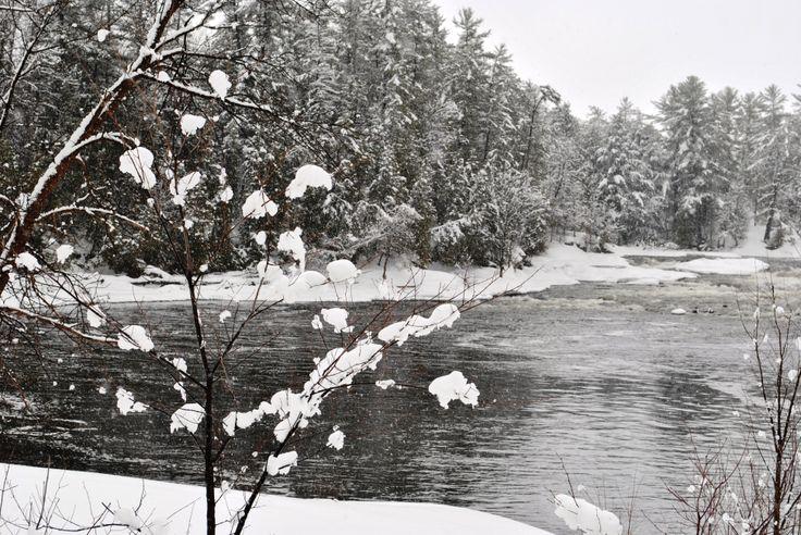 Beautiful creek in West Carleton, Ontario