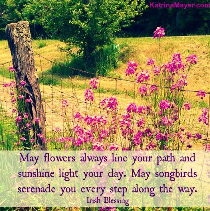 Spring Flower Poems Quotes: Best 25+ Flower Bloom Quotes Ideas On Pinterest